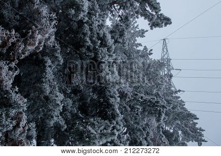 Photo of the high voltage transmission tower standing on the gray sky background behind the iced forest after blizzard