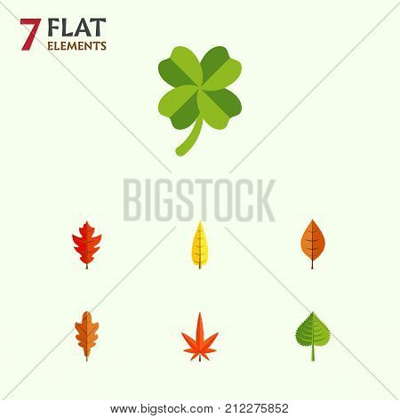 Flat Icon Leaves Set Of Hickory, Maple, Foliage And Other Vector Objects