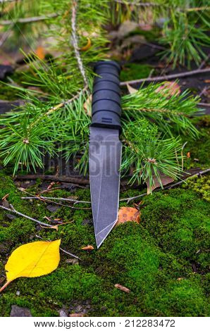 Black Tactical Knife On A Spruce Branch. Vertical Shot.