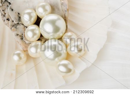 Close up of pearls in sea shell with selective depth of field