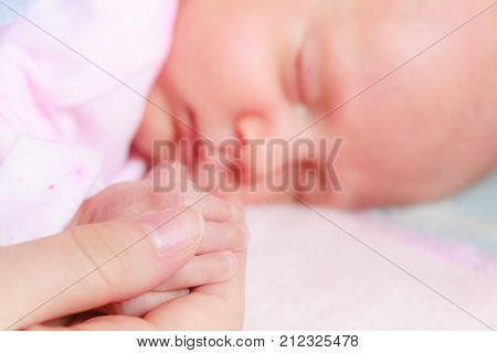 Little Newborn Baby Sleeping In Blanket