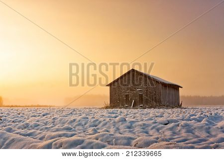 An old barn house stands alone on the snowy fields of the Northern Finland. The winter sun rises late and colors the sky amber.