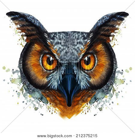 watercolor drawing of mammal animal predator bird owl, vector image, eared owl, night, fast, portrait of owl, yellow eyes, feathers, white background for decoration