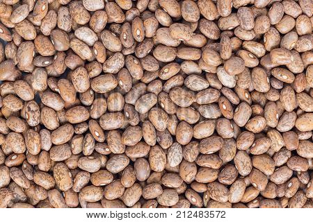 Food background with uncooked dry pinto beans top view horizontal