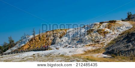 Varied Hot Spring Thermal Colors - Mammoth Hot Springs is Yellowstone's only major thermal area located well outside the Caldera. The terraces change constantly--sometimes noticeable within a day