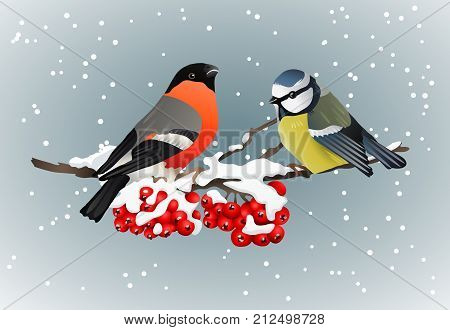 Bullfinch and titmouse sitting on snow-covered branch of mountain ash winter nature vector illustration