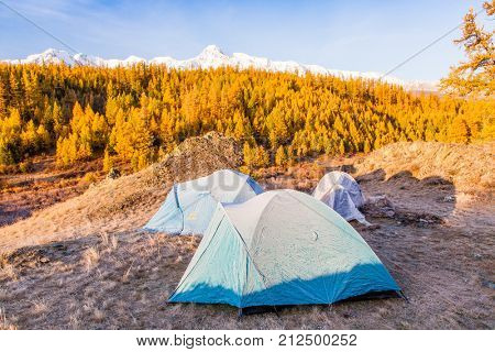 Tents Covered with Frost in Mountain Camp in Autumn