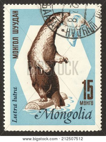 MOSCOW RUSSIA - CIRCA OCTOBER 2017: a post stamp printed in MONGOLIA shows Eurasian Otter (Lutra lutra) the series