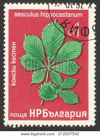MOSCOW RUSSIA - CIRCA OCTOBER 2017: a post stamp printed in BULGARIA shows Aesculus Hippocastanum plant the series