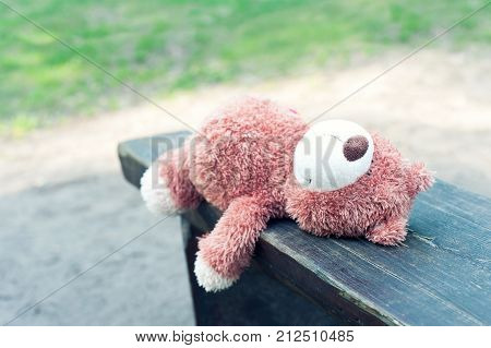 Lonely forgotten teddy bear toy lying on the wooden bench and waiting for owner. Vibrant colored summertime outdoors horizontal image with light filter.