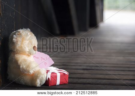 Miss you message with toy and gift - Valentine day theme image with a cute stuffed bear toy holding a pink paper with a miss you text and a red gift box with white ribbon sitting in a wooden tunnel.