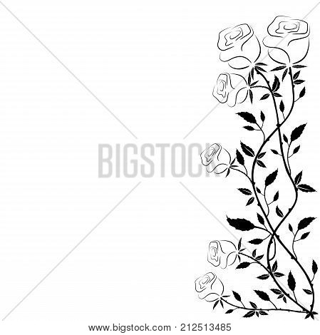 Simple Frame Roses On Vector Photo Free Trial Bigstock,Low Cost Minimalist House Design Interior