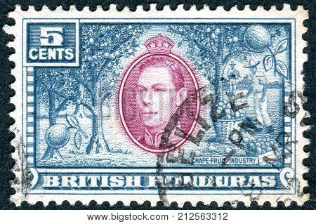 BRITISH HONDURAS - CIRCA 1938: Postage stamp printed in British Honduras shows Grapefruit Industry and King George VI circa 1938