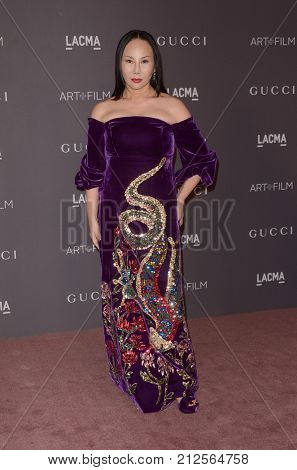 LOS ANGELES - NOV 4:  Eva Chow at the LACMA: Art and Film Gala at the Los Angeles County Musem of Art on November 4, 2017 in Los Angeles, CA