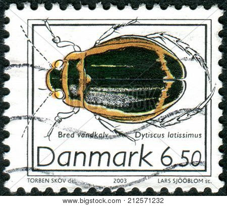 DENMARK - CIRCA 2003: Postage stamp printed in Denmark shows beetle Dytiscus latissimus