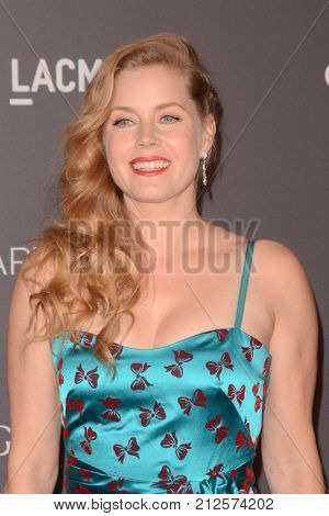 LOS ANGELES - NOV 4:  Amy Adams at the LACMA: Art and Film Gala at the Los Angeles County Musem of Art on November 4, 2017 in Los Angeles, CA