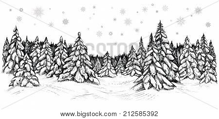 Winter coniferous trees forest covered with the snow, hand drawn sketch. Black and white vector illustration of snowy firs.