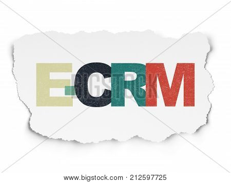 Finance concept: Painted multicolor text E-CRM on Torn Paper background