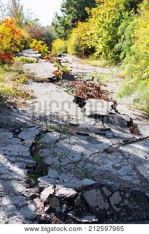 Huge Cracks On Pavement Due To Natural Disasters, Landslide, Earthquake. Broken Coating Of Asphalt L