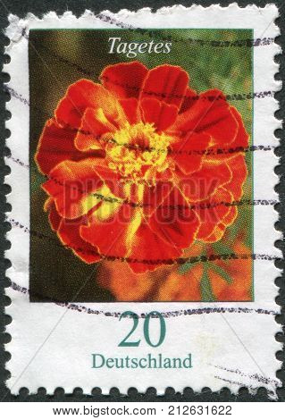 GERMANY - CIRCA 2005: A stamp printed in Germany flower shows Tagetes circa 2005