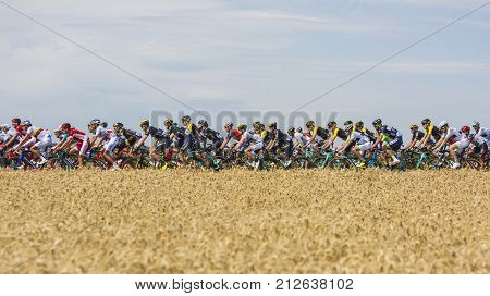 Vendeuvre-sur-Barse France - 6 July 2017:The British cyclist Simon Yates of Orica-Scott team wearing the White Jersey riding in the peloton through a region of wheat fields during the stage 6 of Tour de France 2017.