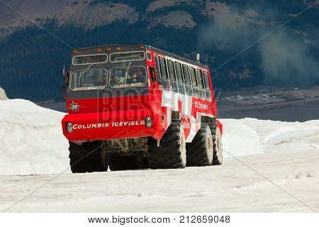 Athabasca August 2015 In this period of no snow this special truck brings people to visit the Athabasca Glacier in Athabasca as it is the only truck able to do this tour.