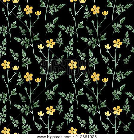 Seamless decorative pattern with yellow buttercup flowers