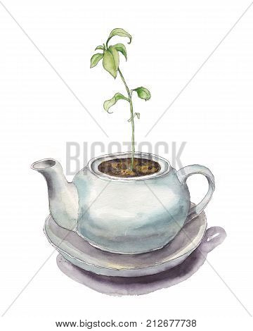 Young green sprout growing in classia round teapot, spring time, new life concept, watercolor illustration. Spring sprout, plant growing in little white round teapot, watercolor sketch illustration