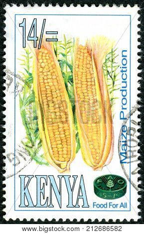 KENYA - CIRCA 1995: A stamp printed in Kenya dedicated to 50th Anniversary of the Food and Agriculture Organization of the United Nations (FAO) shows a maize circa 1995