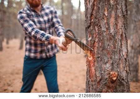 A man in a plaid shirt chops on a blurred wood background with an axe. Axe hack tree close up image