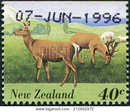 NEW ZEALAND - CIRCA 1995: A stamp printed in New Zealand shows farm animals - Deer circa 1995