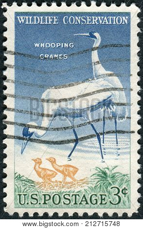 Usa - Circa 1957: Postage Stamp Printed In The Usa, Wildlife Conservation Issue, Shows A Whooping Cr
