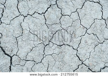 Severely Dried Cracked Earth The Concept Of Global Drought, Natural Disasters, Environmental Problem