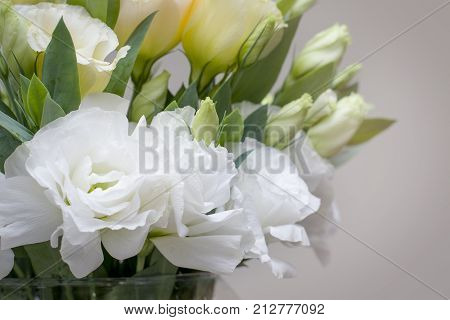 Beautiful white Lisianthus flowers look so much alike roses