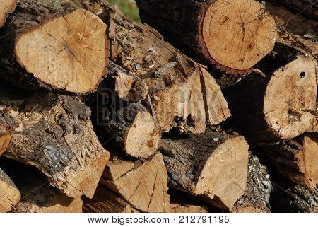 Firewood cut, stacked and ready to use.
