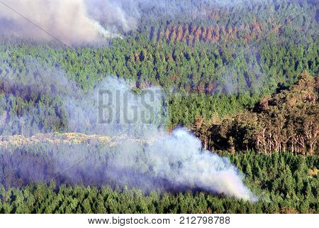 Billowing smoke from a bushfire in the Glass House Mountains of Queensland Australia