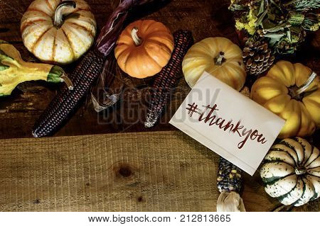 Happy Thanksgiving Day Card writing with hashtag #thankyou, thank you as thanks for clients and business background with traditional Thanksgiving foods on table pumpkins, gourd, squash, acron, centerpiece, rustic wood and indian corn with room for copy, a