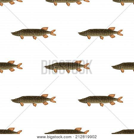 Seamless pattern freshwater flat pike fish isolated on white background. Marine fresh food logo, fishing sport.