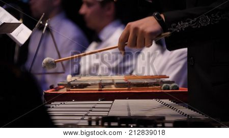 Close up of the musician playing on xylophone. Xylophone, music and chromatic instrument concept - closeup on wooden bars with four mallets in human hands, performer in black dress, glockenspiel, orchestra concert, art of music.