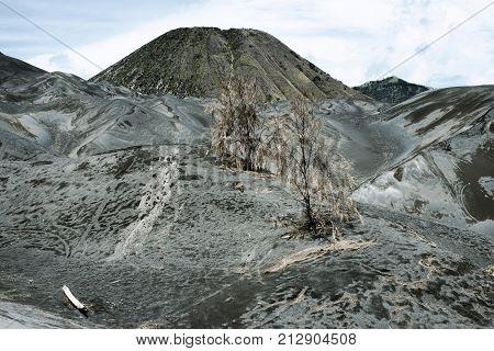 Arid landscape surrounding the active volcano on Mount Bromo Tengger Semeru East Java Indonesia