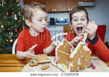 children eat gingerbread house and have fun. two cute boys enjoy Christmas traditions. Kids broke a gingerbread house
