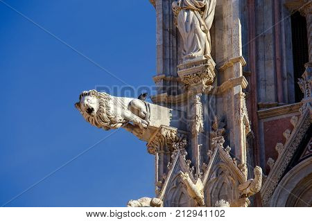 Gargoyle on Cathedral of the Blessed Virgin. Siena. Tuscany. Italy