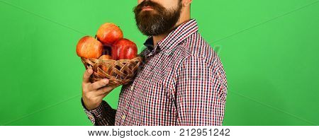 Guy Presents Homegrown Harvest. Man With Beard Holds Fruit Bowl