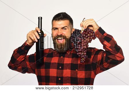 Man Holds Bunch Of Grapes And Bottle Of Wine