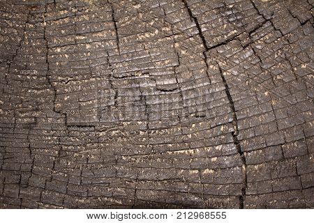 Old cracky brown wooden surface texture photo.