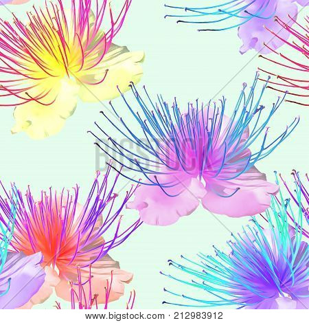 Capers. Texture of flowers. Seamless pattern for continuous replicate. Floral background photo collage for production of textile cotton fabric. For use in wallpaper covers