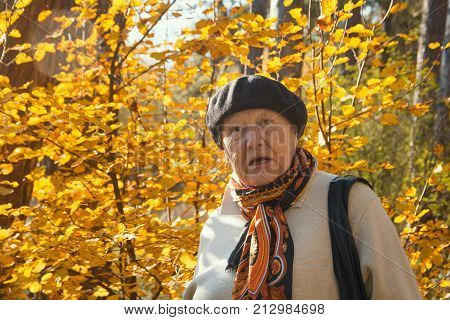 Angry old woman feels the outrage in autumn park, portrait