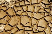 Dried soil cracking under the scorching sun poster