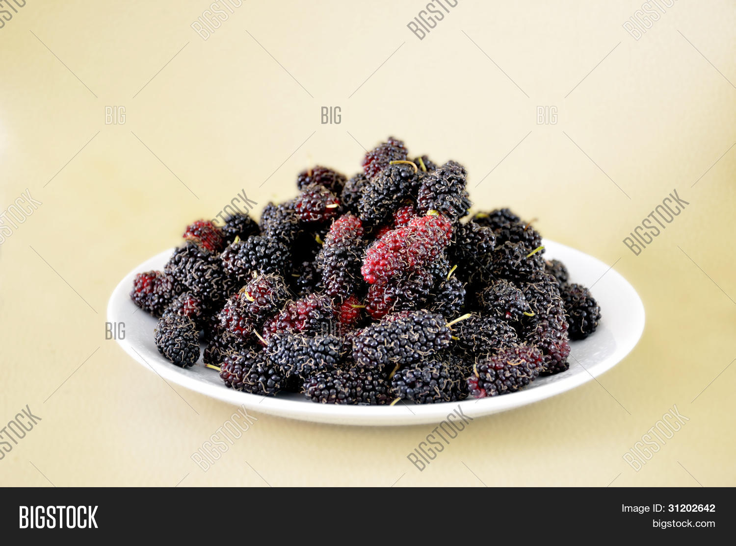 Mulberries Image Photo Free Trial