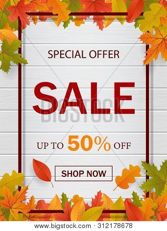 Autumn Sale Template Background For Website With Frame, Seasonal Fall Leaves And Wood. Special Offer